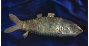 Rituální kořenka (ryba)