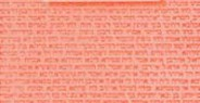 Americká židovská literatura [American Jewish Literature]