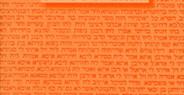 Ženy v Bibli, ženy dnes [Women in the Bible, Women Today]