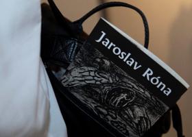 novinky/Rona2019/Rona5.png