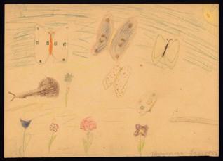 Motýli - Marianna Langová (1932-1944), nedatováno (1943-1944), pastelky na papíře, 20,6 x 28,7 cm, signováno vpravo dole: Marianna Langová. Provenience: vytvořeno v hodinách kreslení organizovaných v letech 1943-1944 v terezínském ghettu malířkou a pedagožkou Friedl Dicker-Brandeis (1898-1944); ve sbírkách Židovského muzea v Praze od roku 1945 ŽMP inv. č. 133.374