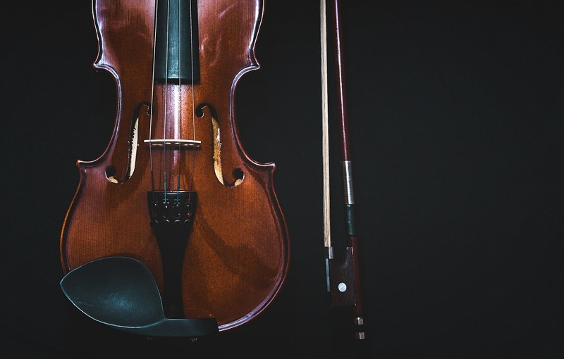 bowed-instrument-1853324_960_720.jpg